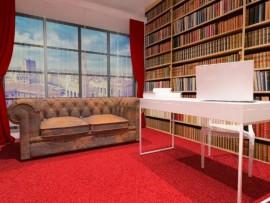 Studio videochat timisoara Library